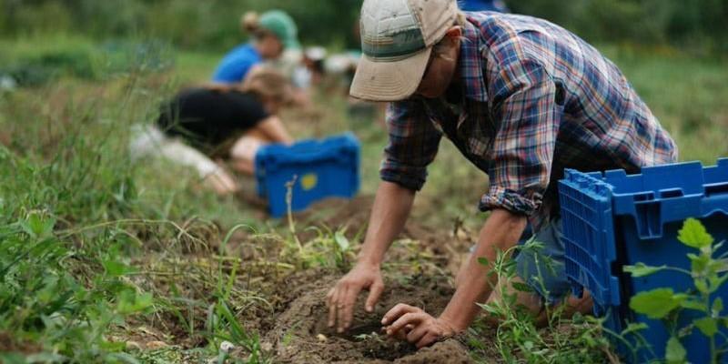 lavoratori-agricoli.