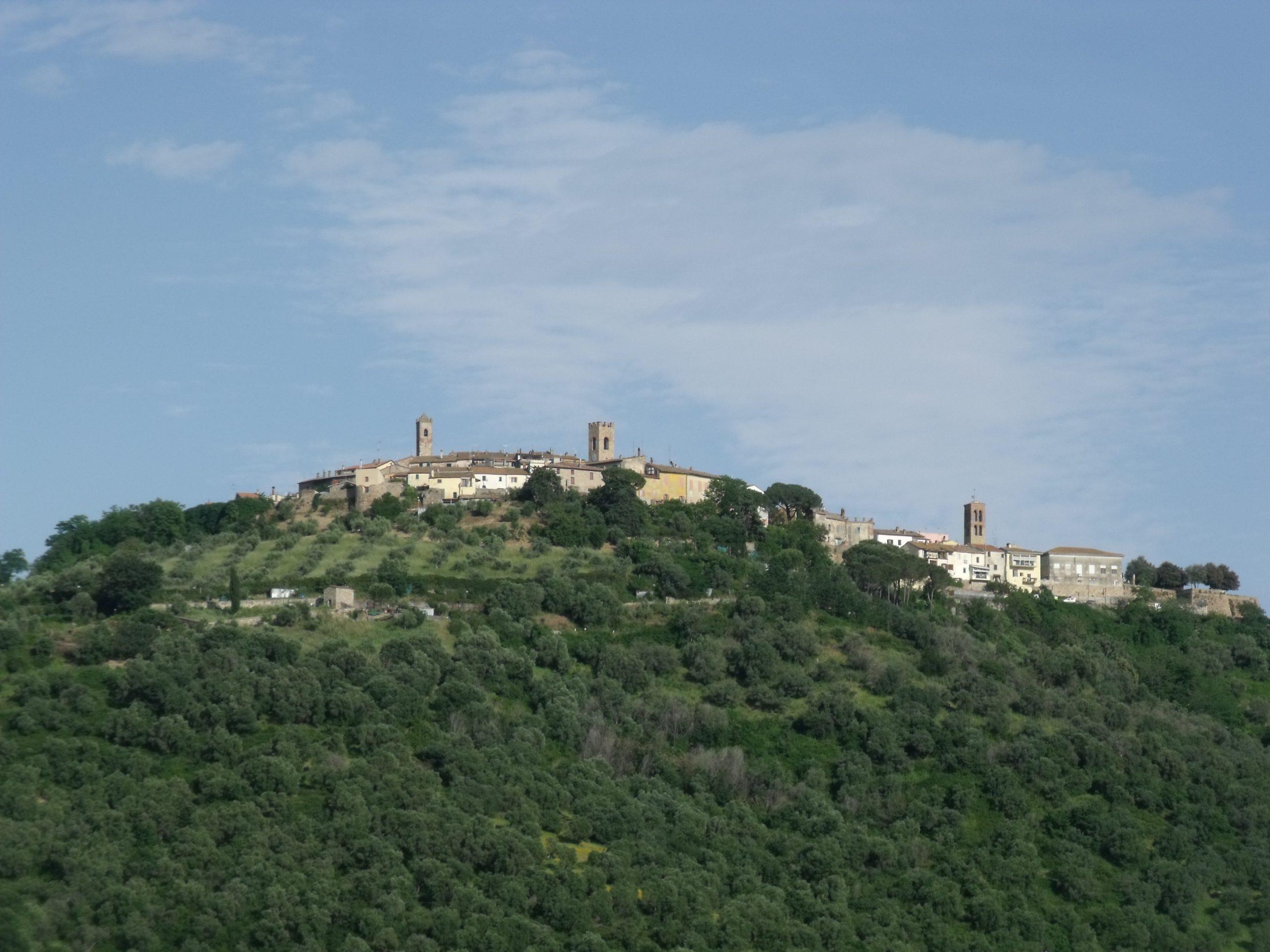 Montepescali-Panorama