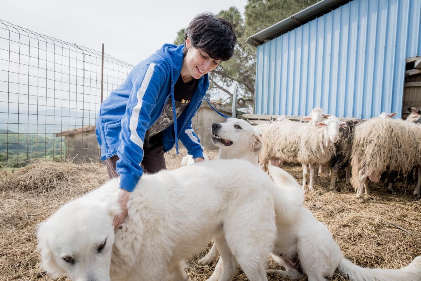 difesa-attiva-presidente-Francesca-Barzagli-e-i-cani-da-guardiania